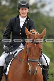 British dressage. Brook Farm training centre. Stapleford Abbotts. United Kingdom ~ MANDATORY Credit Garry Bowden/Sport in Pic...