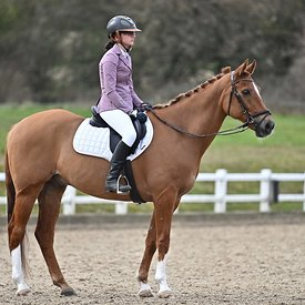 14/03/2020 - Class 8 - Combined training (dressage) - Brook Farm training centre - UK