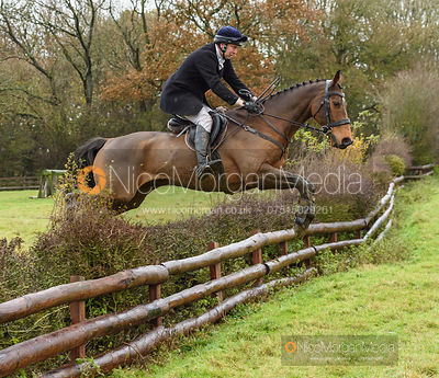 Richard Skelt jumping a hedge at Orton Park - The Cottesmore Hunt at Knossington 26/11