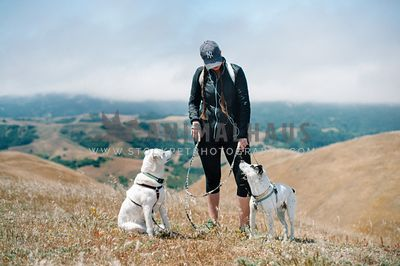 Two large white dogs are taking a break with their mom on a hike