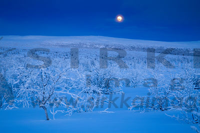 Full moon in Muotkatunturi Wilderness, Lapland