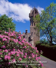 Image - Wallace Monument, Stirling, Scotland