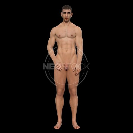 cg-body-pack-male-art-nude-neostock-24