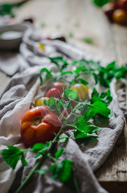 Fresh tomatoes as an ingredient for cookery