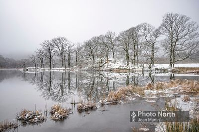 RYDAL 13D - Winter morning, Rydal Water