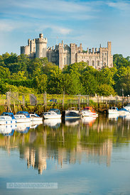 Arundel Castle from the River Arun - BP2524C