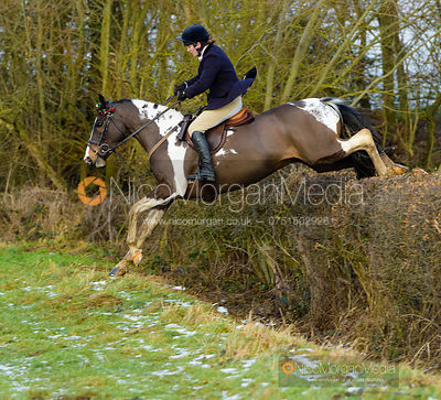 Gina Ellis jumping a hedge at Walton Thorns