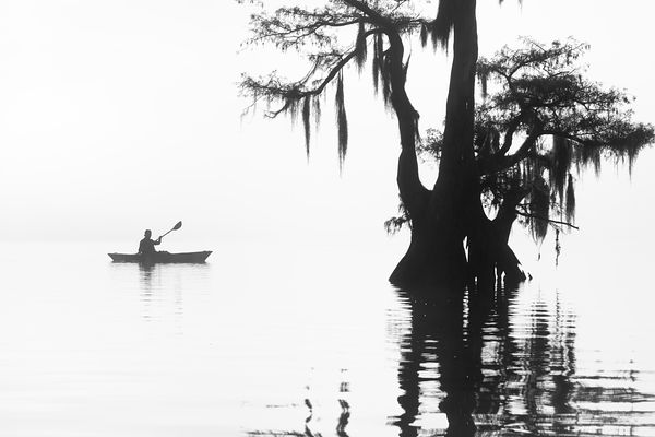 Into The Mist - Louisiana 2017