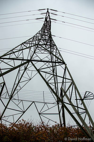 Electricity distribution pylon at Holly Hill, Kent.