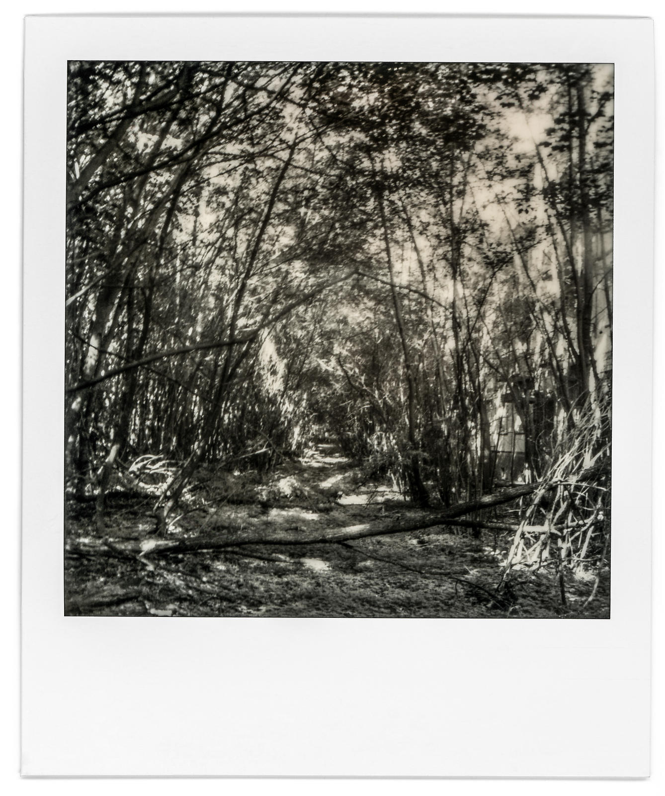 photo-polaroid-tchernobyl-chernobyl-361