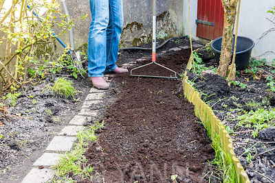 Sowing a lawn on a path