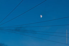 #062077,  Moon in the early night sky framed by telephone cables.