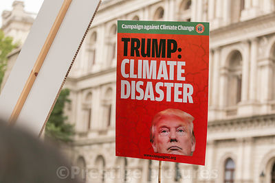 Trump Climate Disaster placard during London demonstration