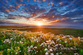 Sunset at Duncansby Head - Europe, United Kingdom, Scotland, Caithness, Duncansby Head - digital