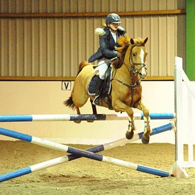 03/02/2019 - Unaffiliated showjumping - Brook Farm training centre