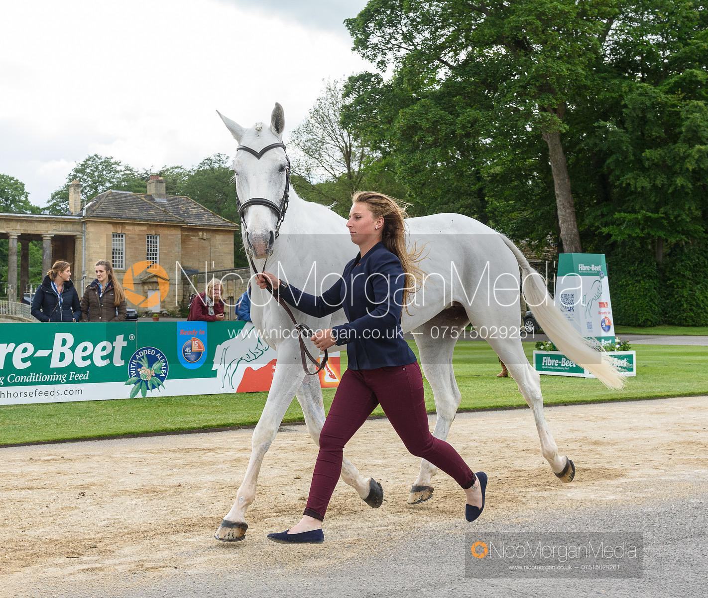 Loicia Tirel and RAYBANN DU CASTERAS at the trot up, Equitrek Bramham Horse Trials 2019