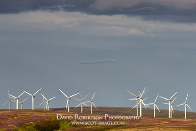 Prints & Stock Image - Crystal Rig Wind Farm, Lammermuir Hills, East Lothian, Scotland.