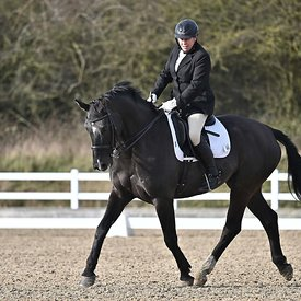 14/02/2020 - Class 7 - British dressage - Brook Farm training centre - UK