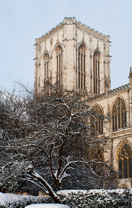 York_snow_(39_of_93)