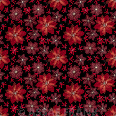Clematis flowers surface patterns design