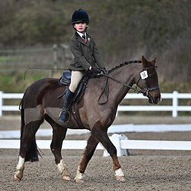 17/02/2020 - Class 3 - EHNPC dressage - Brook Farm training centre - UK
