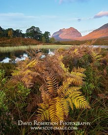 Image - Liathach from Loch Clair in autumn, Torridon, Wester Ross, Highland, Scotland