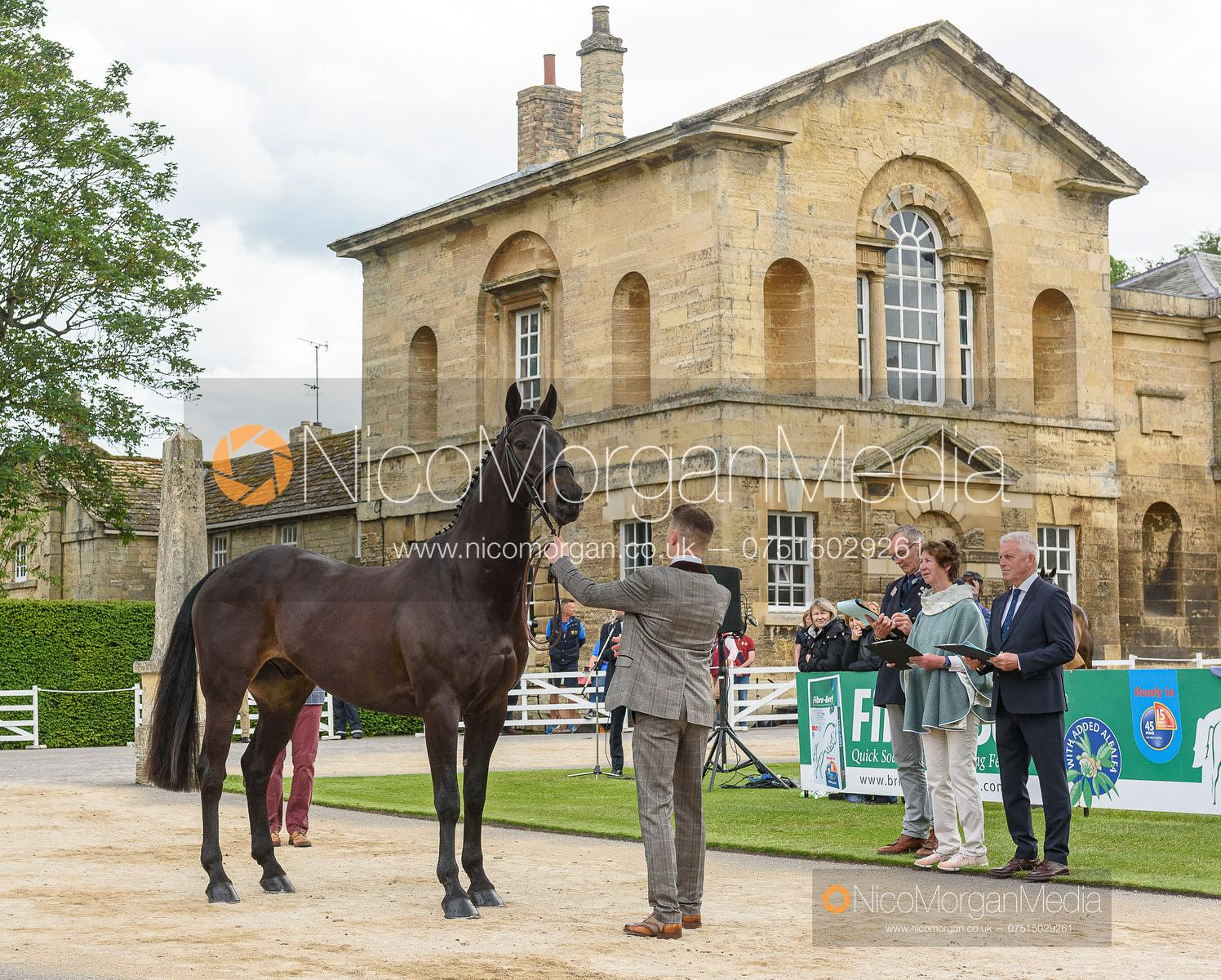 Hector Baker and LEIGHLAND XAVIER at the trot up, Equitrek Bramham Horse Trials 2019
