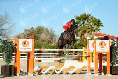 Oliva, Spain - 2020 December 20: Cto España Clásico 1m30 during Campeonato de España de Salto de Obstaculos.(photo: 1clicphoto)
