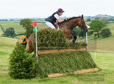 Rebecca Gibbs and DE BEERS DILLETANTE - Upton House Horse Trials 2019.